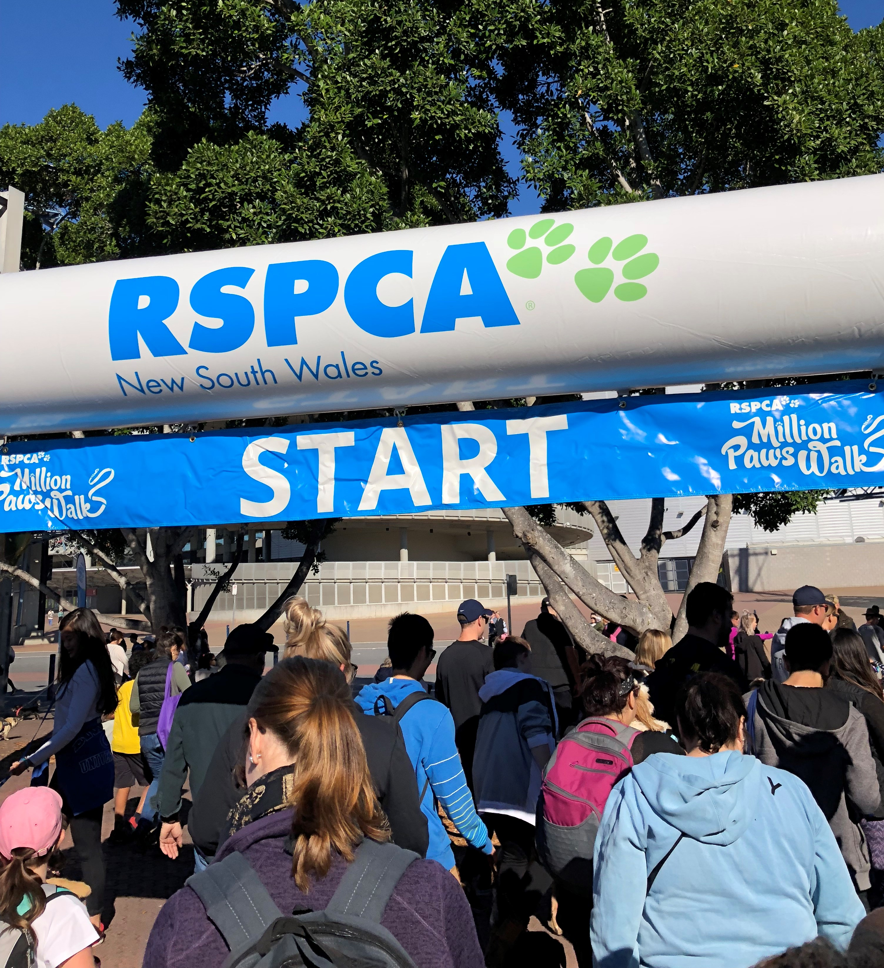 Vetnex is to Participate RSPCA's Million Paws Walk 2019 on the 19th of May at Sydney Olympic Park